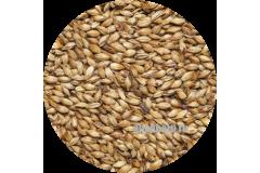 Солод карамельный ячменный Caramel EBC 100 (Viking Malt)