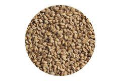 Солод пшеничный Wheat EBC 4-6 (Viking Malt)